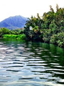 Kayaking on the Hanalei River was peaceful and beautiful.